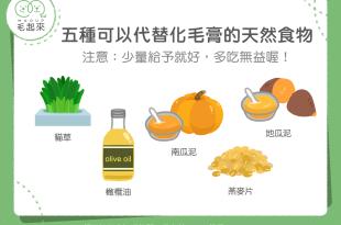 【毛孩食材圖鑑】貓咪福音!5種可以代替化毛膏的天然食物!