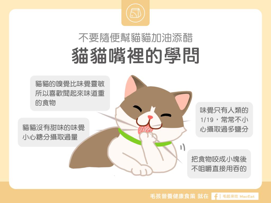 【汪喵餵養知識】不要隨便幫貓貓加油添醋!貓咪嘴裡的學問!