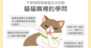 貓咪味覺長不出甜味貓咪嘴巴貓咪愛吃甜貓咪吃東西用吞的貓咪嗅覺遲鈍加油添醋貓咪嘴裡的學問