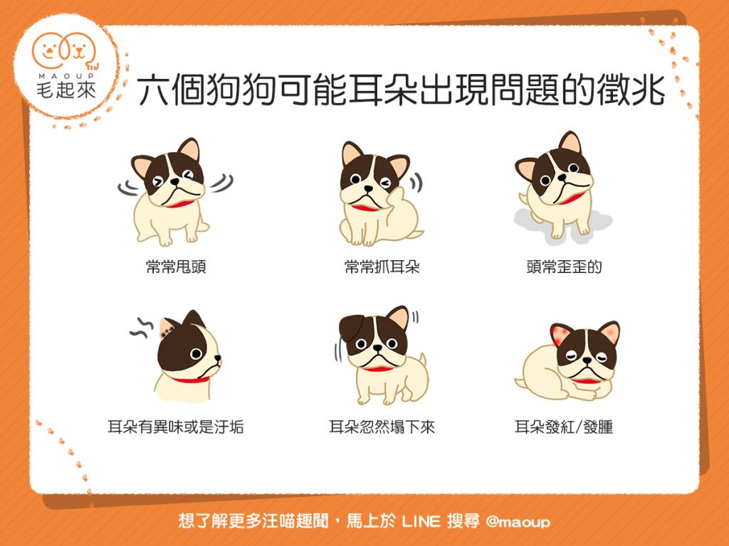 【汪汪康健】狗狗常常抓耳朵?當心!狗狗可能為耳朵問題所苦!