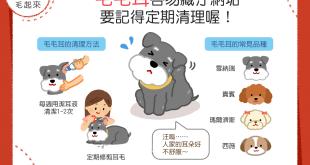 【汪汪康健】你家狗狗有毛毛耳嗎?當心!毛毛耳容易藏汙納垢!
