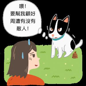 狗狗便便時盯著你看