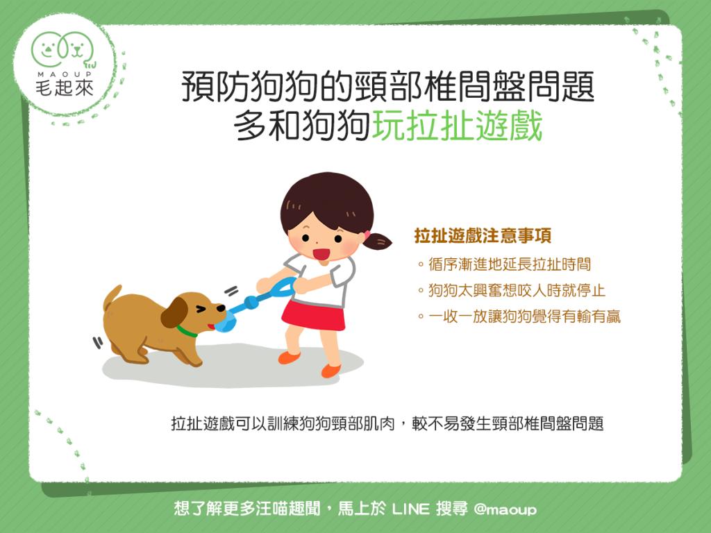 【汪汪康健】頸部椎間盤問題怎麼預防?多和狗狗玩拉扯遊戲吧!