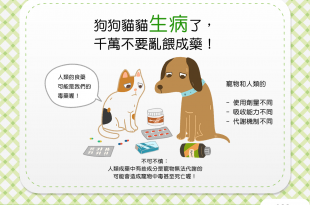 【毛孩健康藥注意】汪汪貓貓生病了,千萬不要亂餵成藥!