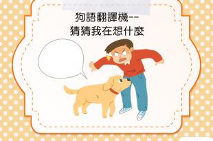 【狗語翻譯機】嗚哇!狗狗拼命聞聞聞,是想說什麼?!
