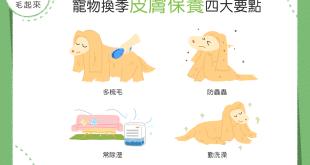 【汪汪康健】狗狗皮膚保養4大重點~教你戰勝換季敏感肌!