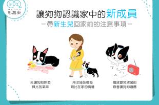 【我是最佳狗保母】帶新生兒回家前,有什麼該注意的呢?