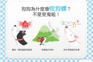 【汪汪行為學】狗狗吹狗螺?!難不成看到了什麼「拍咪啊」?!