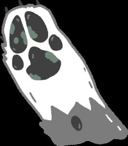 腳趾長黴菌