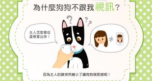 【汪汪行為學】好想狗狗、快來視訊一下!但狗狗怎麼沒反應?!