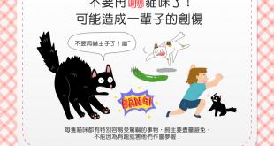 【做個好貓奴】嚇貓好好玩?這麼做可能造成貓貓一輩子的創傷!
