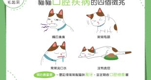 【喵喵康健】貓貓嘴臭臭?當心!這可能是口腔疾病的徵兆!