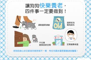 【汪汪康健】想讓狗狗快樂養老?這4件事一定要做到!