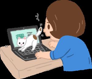 小貓 需要花費更多心力時間照顧