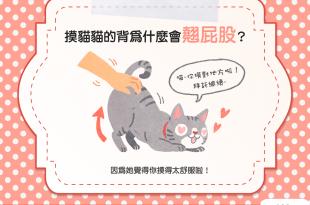 【喵喵行為學】好害羞!摸貓貓居然翹屁股?難道貓貓想交配?!