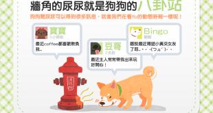【汪汪小學堂】你知道嗎?外頭牆角的尿漬是狗狗的八卦站唷!