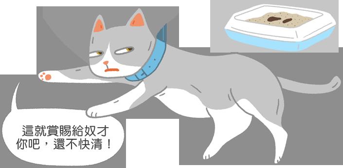 【喵喵真心話】臭死啦!貓貓為啥又不埋便便啦?!(大哭)