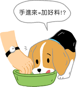 狗狗在吃飯時把手伸進碗裡放好料狗狗老是護食怎麼辦?3步驟矯正狗狗護食行為