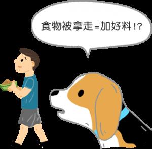 狗狗在吃飯時,先把碗拿走放好康完再拿回來狗狗老是護食怎麼辦?3步驟矯正狗狗護食行為