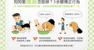 【汪汪訓練術】狗狗老是護食怎麼辦?3步驟矯正狗狗護食行為!