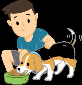 讓狗狗習慣吃飯時有人撫摸狗狗老是護食怎麼辦?3步驟矯正狗狗護食行為