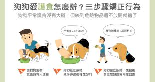 狗狗老是護食怎麼辦?3步驟矯正狗狗護食行為
