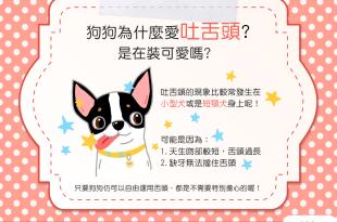 【汪汪小學堂】狗狗為什麼愛吐舌頭?難道是在裝可愛嗎?