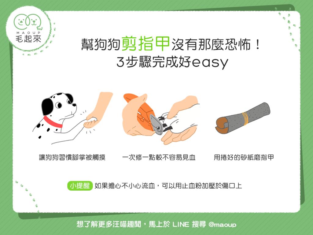 幫狗狗剪指甲的簡單三步驟