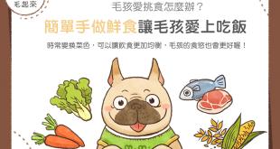 【鮮食烹飪秘訣】家有挑食狗?超簡單手做鮮食讓毛孩愛上吃飯!