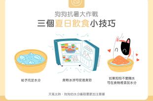 【汪喵餵養知識】狗狗抗暑大作戰!3個夏日飲食小技巧