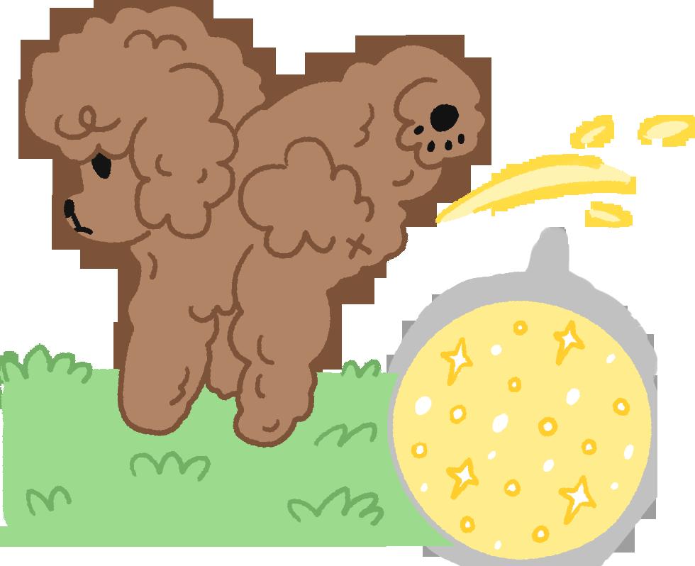 【汪汪康健】尿尿一閃一閃亮晶晶~當心!狗狗膀胱炎找上門了!