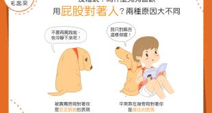 【汪汪行為學】奇怪欸你!為什麼狗狗喜歡用屁股對著人啊?!