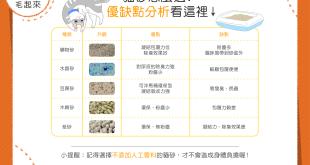 各種貓砂的優缺點比較