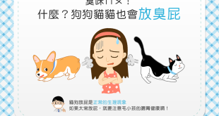 【喵汪小學堂】矮額~臭咪摸(捏鼻)狗狗貓貓也會放臭屁?!