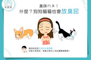 【喵汪小學堂】矮額~臭咪摸!狗狗貓貓也會放臭屁?!