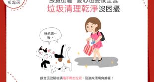 【街貓二三事】餵食街貓「乾淨餵食」是不變的守則喔!