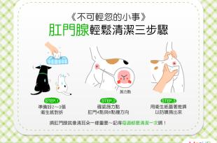 【汪喵康健】不可輕忽的小菊花保健法!肛門腺輕鬆清潔3步驟