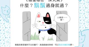 【喵喵知識加】鬍鬚過,身就過?貓貓的鬍鬚有這麼厲害?!