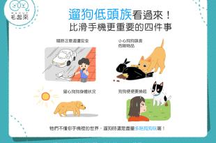 【飼主看過來】帶狗狗散步還在當低頭族?這4件事要注意!