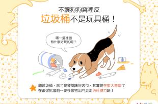 【汪汪行為學】吼~垃圾桶不是玩具箱啦!狗狗是想造反嗎?!