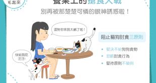 【汪喵餵養知識】狗狗貓貓老是討食得逞?主人別心軟亂餵食!