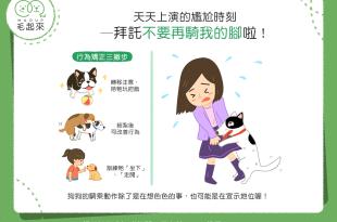 【汪汪訓練術】好尷尬!怎樣才能不讓狗狗再「騎」我的腳?!