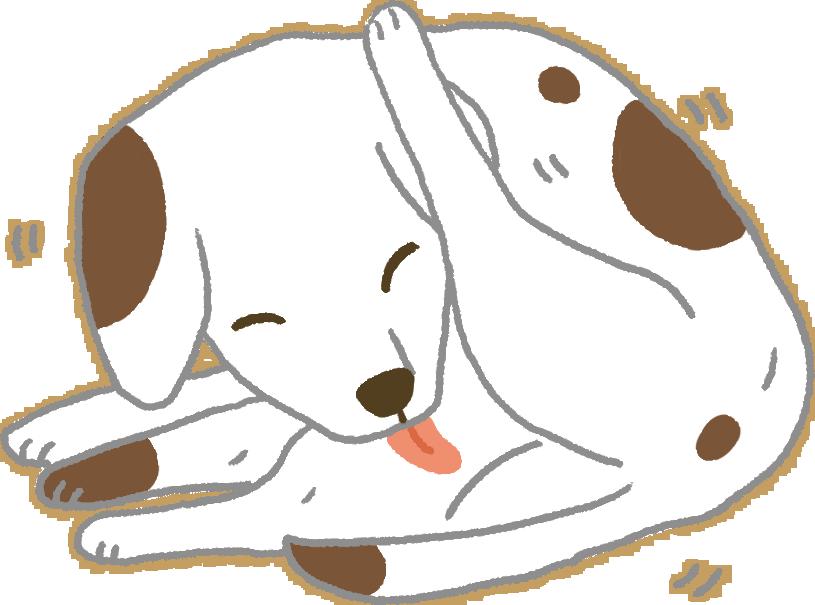 【汪汪康健】羞羞臉!狗狗一直舔自己的生殖器是為什麼?!