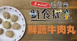 【毛爸3分鐘鮮食提案】第一次作菜就上手!第1道-鮮蔬牛肉丸!