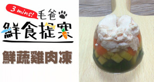 【毛爸鮮食提案】漂亮又健康的汪汪好料理—鮮蔬雞肉凍!