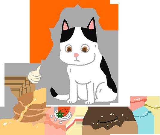 貓咪吃不出甜味貓咪味覺寵物知識