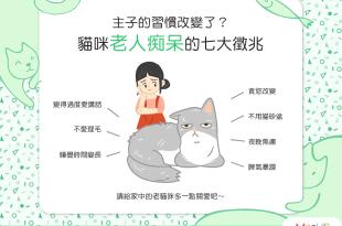 【喵喵康健】主子的習慣改變了?貓咪老人痴呆的7大徵兆!