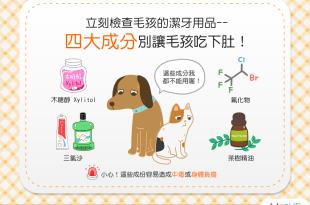 【飼主看過來】狗狗貓貓的潔牙用品安全嗎?4大成份不要碰!