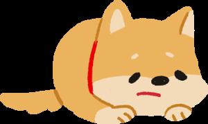 狗狗寂寞無聊