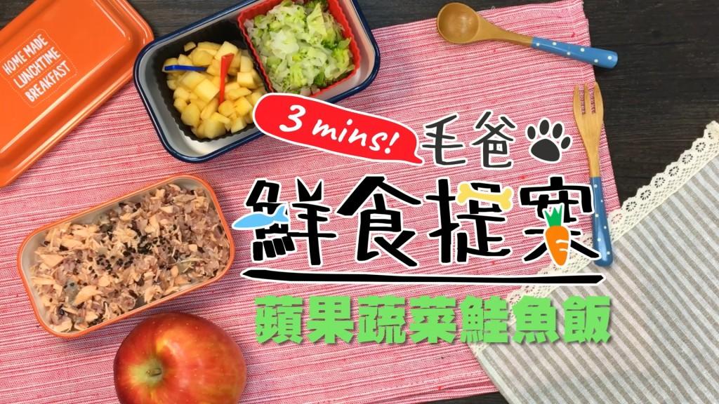 【毛爸鮮食提案】來點海底游的健康鮮食—蘋果蔬菜鮭魚飯!